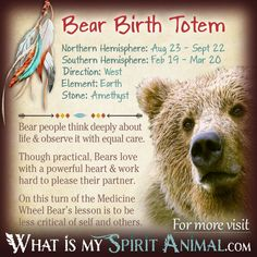 Numerology Spirituality - Is Bear your Birth Totem? Read the in-depth description in my Native American Zodiac Astrology series! Learn Bears personality, compatibility, more! Get your personalized numerology reading Native American Zodiac Signs, Native American Totem, Native American Spirituality, Native American Symbols, Native American History, American Indians, Native American Prayers, American Women, American Art