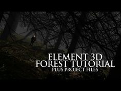 In this tutorial I create a forest scene with Element 3D. I cover how set up your scene and integrate live action footage within it using the built-in World ...