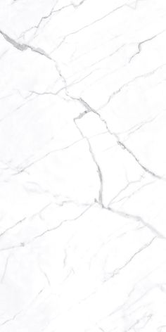 Mayfair Statuario Hd Polished Rectified Porcelain 24x24