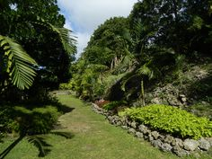 Orchid World & Tropical Flower Garden, Barbados