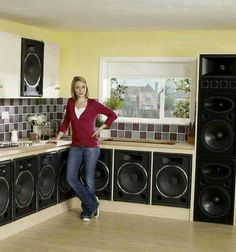kitchen speakers wooden step stools for the 132 best images loudspeaker klipsch bassbins in your that s what we call food soul