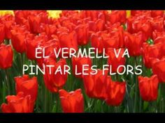 ELS COLORS 1 - YouTube Conte, Musicals, Education, Videos, Youtube, Kids Fun, Kids Songs, Music Is Life, Children's Literature