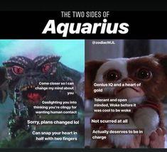 Hmmmm lol not gaslighting. we don't like clingy. there is a difference Aquarius Pisces Cusp, Aquarius Rising, Aquarius Traits, Aquarius Love, Astrology Pisces, Aquarius Quotes, Age Of Aquarius, Zodiac Signs Aquarius, Zodiac Horoscope