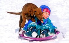 """When Emmeline went sledding, her cousin's pup wanted to ride too,"" says Gail Seest of Mulberry, Indiana. country-magazine.com"