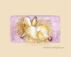 Crane Pose Yoguineas Collection Cute Guinea by WhenGuineaPigsFly