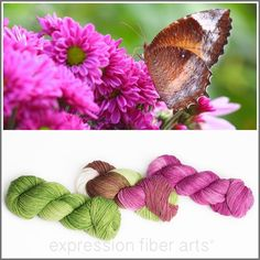 Expression Fiber Arts - BUTTERFLY WISHES KIT - 3-PLY SUPERWASH MERINO WOOL SOCK, $69.00 (http://www.expressionfiberarts.com/products/butterfly-wishes-kit-3-ply-superwash-merino-wool-sock.html)