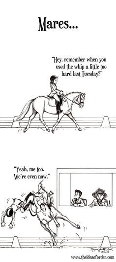 Yup have two of em and my mom has a mare who acts like a stud!