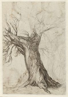 leirelatent:  wetreesinart:  Jacques de Gheyn le Jeune (Jacob de Gheyn II), (Pays-Bas, 1598-1608), Étude de tronc d'arbre, vers 1598-1608, encre et craie sur papier, Amsterdam, Rijksmuseum  Are you, are you Coming to the tree?