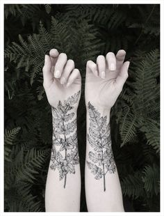 pine forest tattoo - Google-søk                                                                                                                                                                                 More