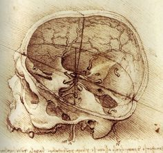 Leonardo Da Vinci - Curiosidades y dibujos …