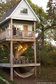 Treehouse with a hammock, rope swing, and picnic table underneath.