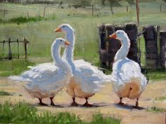 Yard Trio by Carol Jenkins Oil ~ 12 x 16 Art Canard, Duck Art, Southwest Art, Animal Paintings, Oil Paintings, Magazine Art, Bird Art, Art Oil, Painting Inspiration