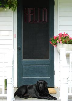 """Embroider a """"Hello"""" greeting on your screen door Tutorial.  AND 45 BEST Weekend Lifestyle DIY Tutorials EVER. GIFT DECOR, FURNITURE, JEWELRY, FOOD, WHIMSEY, PARTY from MrsPollyRogers.com"""