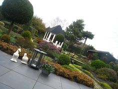 Residential Landscape Lighting Design Houston