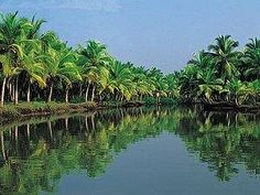 lesser-known-gems-of-kerala-india-tour-itinerary, india tours, tour packages to india, tour packages india, india package holiday