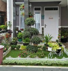 My Minigarden 🌲🌳🌴🌵🌱🌹🌷🌸 #homegarden #garden #minigarden #homedecor #green #homesweethome #homedecoration #gardening #rumahdantaman