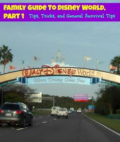 Family Guide to Disney World, Part 1  The Mama Maven Blog #Disney #WDW - Tips, Tricks, and General Survival Tips