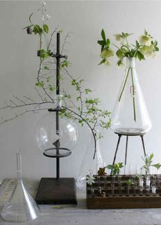 Chemistry Flask Vase