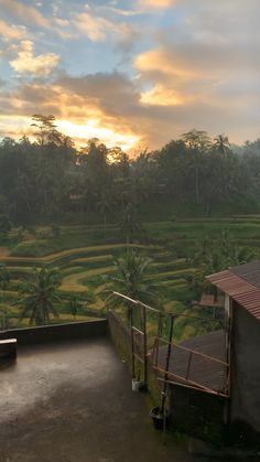 Travel Discover Some of our favorite clips of moments we spent in Bali last year. Bali Travel Guide Asia Travel Travel Tips Ubud Cool Pictures Of Nature Forest And Wildlife Beautiful Places To Travel Travel Videos Travel Aesthetic Bali Travel Guide, Asia Travel, Travel Tips, Cool Pictures Of Nature, Travel Pictures, Beautiful Places To Travel, Cool Places To Visit, Ubud, Forest And Wildlife