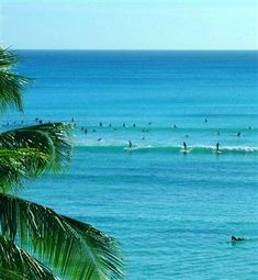 Vacation Packages To Hawaii Places Id Like To Go Pinterest - Hawaii vacation packages cheap