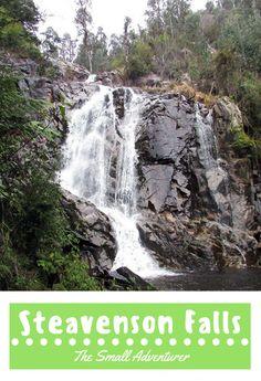 Steavenson Falls ||