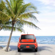 For instant paradise, just add Kia Soul. Kia Soul, Paradise, Club, Check, Do Your Thing, Heaven