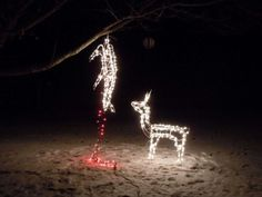 10 Funny Redneck Christmas Decorations For Hunters in measurements 1024 X 768 Redneck Christmas Lightsredneck Christmas Lights - Even the Christmas tree Redneck Christmas, Christmas Humor, Merry Christmas, Christmas Stuff, Dark Christmas, Christmas Garden, Christmas Time, Christmas Thoughts, Christmas Truck