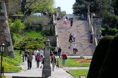Dnevno | DA LI STE IH PRIMETILI? Kalemegdanske biste kao sećanje na velikane srpske istorije (FOTO)