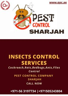 You get Complete Pest Free Home From Our Pest Control Services Get Ride From All Types of Pest at Affordable Prices Contact Us Now +971 505243804 Fly Control, Pest Control Services, Sharjah, Free