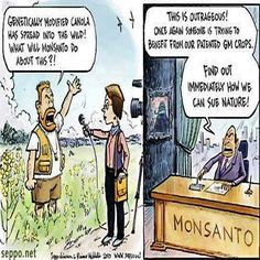 Monsanto is up to no good.