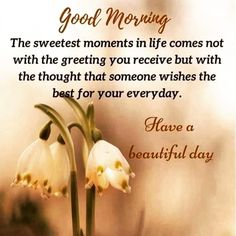 """Good Morning Quotes on Instagram: """"Follow for More Updates 🌸@good_morning._quotes #good_morning_quotes #good_morning #goodmorning #goodvibes #morningmotivation…"""" Good Morning India, Good Morning America, Cute Good Morning Quotes, Good Morning Images, Butterfly Poems, Special Friend Quotes, Angel Guidance, Have A Beautiful Day, Morning Motivation"""