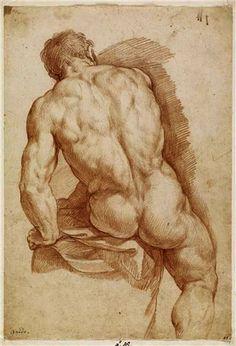 Figure Drawing Renaissance-Zeichnung im Stile Leonardo da Vinci. Human Figure Drawing, Figure Sketching, Figure Drawing Reference, Guy Drawing, Life Drawing, Painting & Drawing, Human Body Drawing, Drawing Studies, Art Of Man