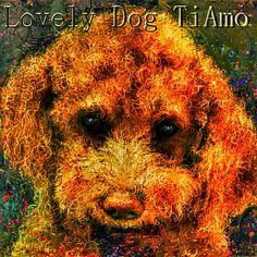 PCペイントで絵を描きました! Art picture by Seizi.N:   愛犬TiAmoの絵をこのpickで加工しました。  今僕はこのバンドの新しいジャンルでメタルサンバにハマってます、ワールドカップもこの音楽ジャンルで世界へ、ビバ・サンバ!!! Huaska - Trem das Onze http://youtu.be/LBKxOJmkpiY