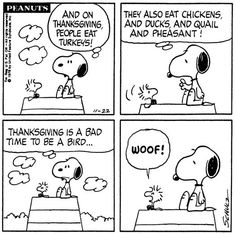 Snoopy and Woodstock on Thanksgiving