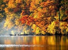 #Oklahoma in the fall isn't complete without a trip to Beavers Bend State Park to see the stunning foliage along the Mountain Fork River. (Photo by: Vicki Bogard)