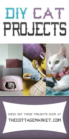 DIY Cat Projects - The Cottage Market #DIYCatProjects, #DIYProjectsForCats, #CatLoverDIYProjects