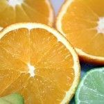 Hand Citrus Juicers – Pressers, Squeezers and Reamers for Lemon, Orange & Lime
