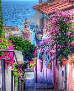 Colourful street in Tellaro, Liguria, Italy 💜🍝 💜 Bella Italia 💜🍝 💜 Places Around The World, The Places Youll Go, Places To See, Around The Worlds, Dream Vacations, Vacation Spots, Vacation Places, Vacation Wear, Greece Vacation