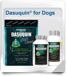 Great for supporting joint health in dogs with arthritis or orthopedic injury