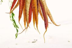 Root vegetables contain a lot of fibre that can keep you feeling full for longer periods. It also is important for energy and insulin balance! Try to incorporate them into your diet every day!