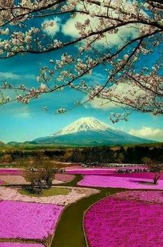 I think this is Mt. Fuji, Japan...beautiful as most of Japan.