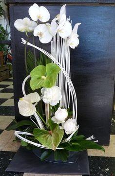 orchidée, anthurium, pivoine, sheffera