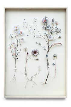 3d collages from pressed flowers and cut out flower pictures