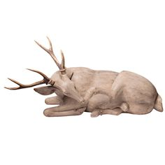 French Wood Carved Stag with Antlers 1850-1890