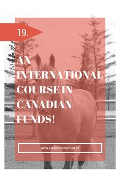 Wow - the savings to your dream career are unreal!! #equineconnection