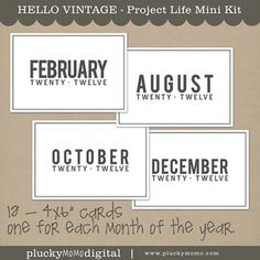 Large format MONTHLY cards for Project Life.