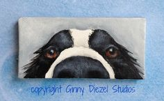 Border collie mini wrapped canvas original by GinnyDiezelStudios