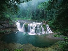 Facebook Pinterest Twitter Lower Lewis River Falls, Gifford Pinchot National Forest, Washington, USA