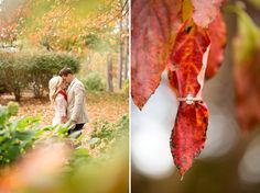 Cute engagement photoshoot! love the fall leaf with the ring:)