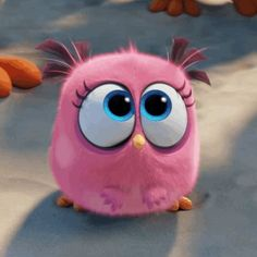 10 Best Cute Angry Bird Images Angry Birds Angry Birds Movie Bird Gif